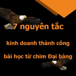 7 nguyên tắc kinh doanh thành công bài học từ chim Đại bàng