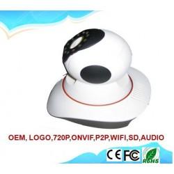 Camera IP PTZ HS-8093IP