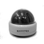 Camera sanvitek S-111A