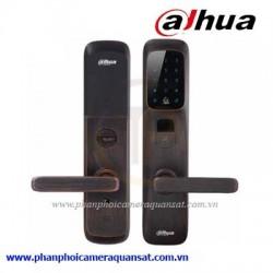 Khoá biệt thự thông minh DHI-ASL6101K-B