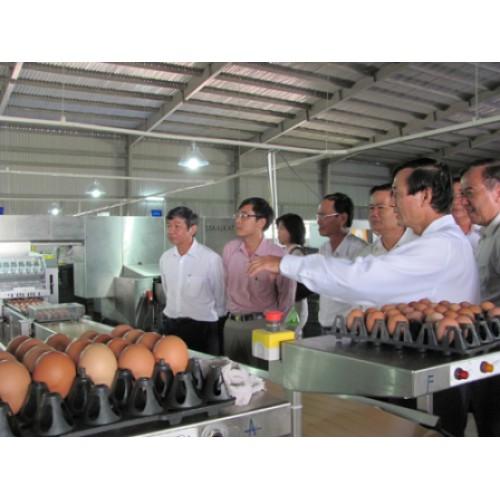 Lắp đặt tổng đài điện thoại CÔNG TY TNHH QL VIETNAM AGRORESOURCES TẠI TP.HỒ CHÍ MINH