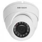 Camera Dome KX-2002N 2.0MP