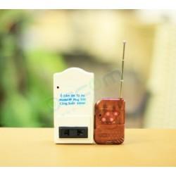 Ổ Cắm Điều Khiển Từ Xa DC-RF Plug 1000
