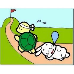 Một câu truyện sâu sắc đúc kết từ câu chuyện Thỏ và Rùa