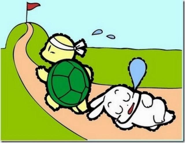 Bài học sâu sắc từ câu chuyện Thỏ và Rùa